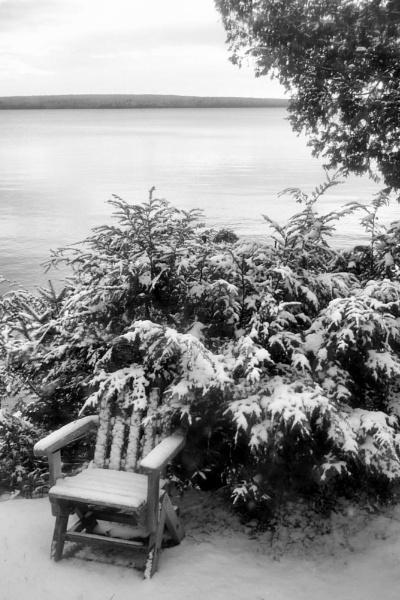 Winter Chair by Joline