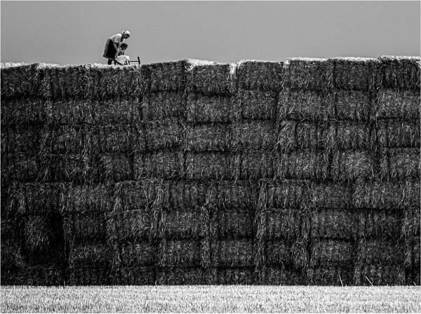 Straw bales by Dixxipix