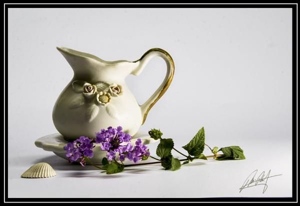 Violet by dusfim