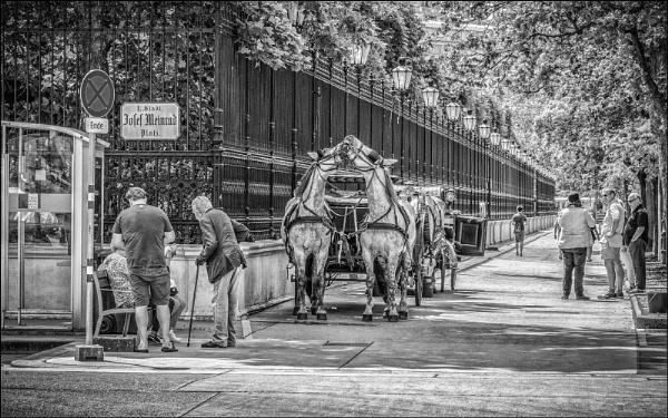 Vienna by Kilmas