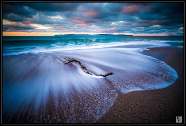 "\""Driftwood on Ballycastle Beach\"" by DavidLaverty"