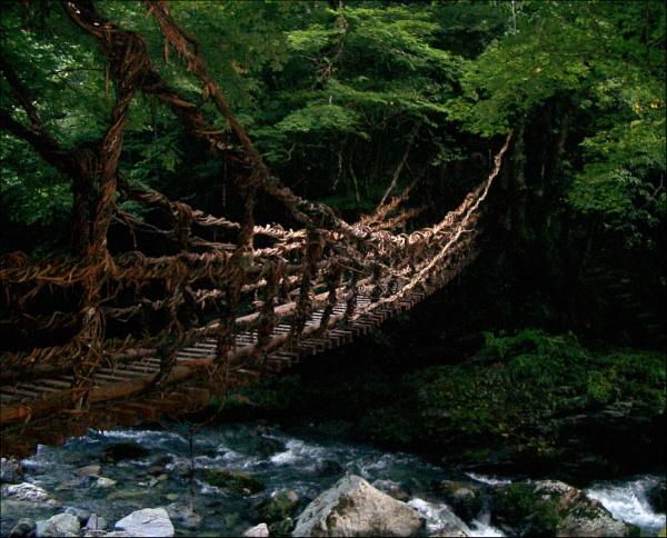 Rope Bridge by laura1