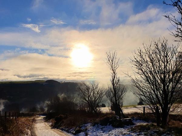 Morning Mist by prin