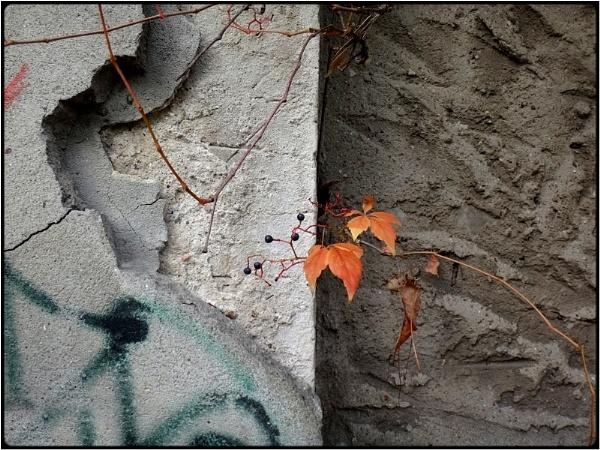 fallstill wall by FabioKeiner