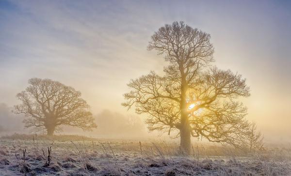 Cold Start by Alffoto