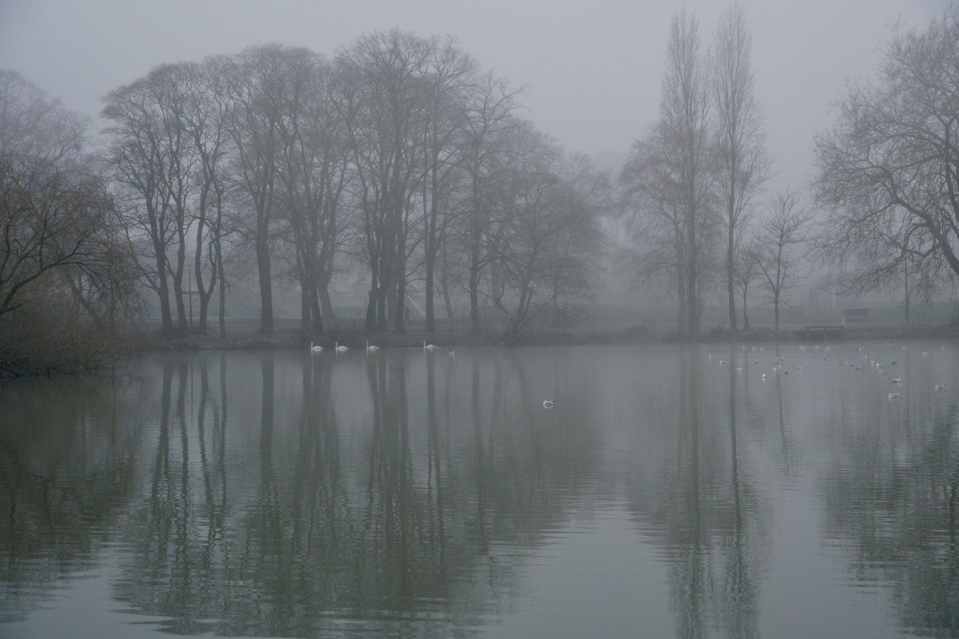 Foggy-Misty morning.