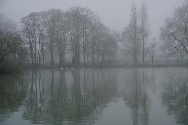 Foggy-Misty morning. by Oldgeezer70