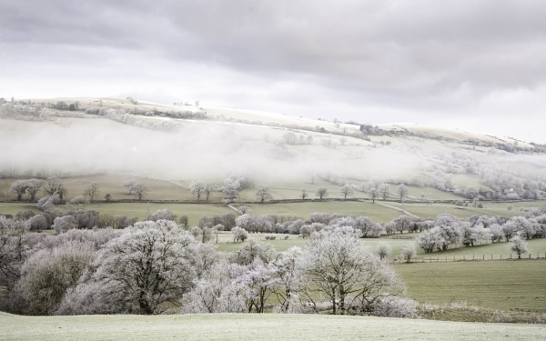 Mist and Frost by Brenty