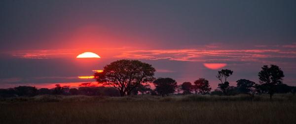 Dawn on the Busanga Plain. by rontear