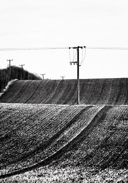 The fields by xwang