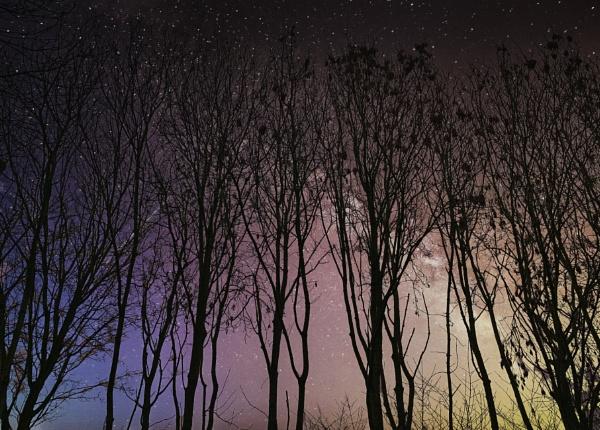 Stary Night by RLF