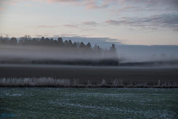 Morning mist by jaktis