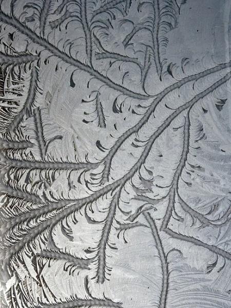 Ice patterns by pdunstan_Greymoon