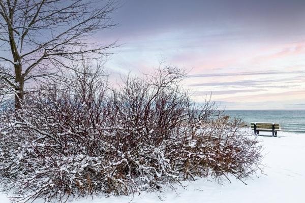 Winter Breeze by manicam