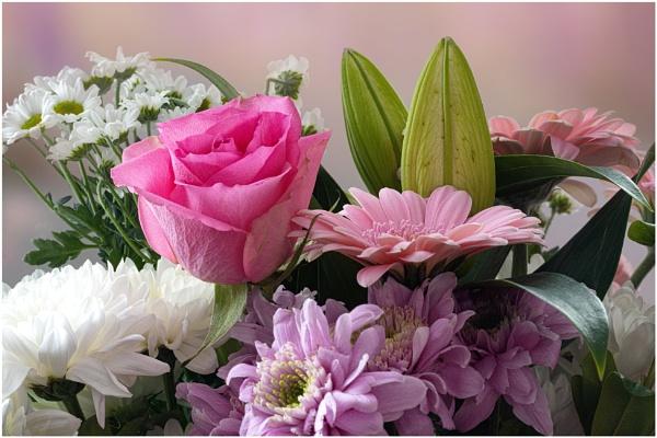 Bouquet by capto
