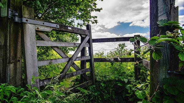 Broken Gate by woodini254
