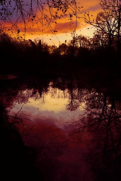 Sunrise Silhouettes by IainHamer