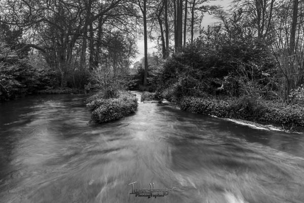 River Test by IainHamer