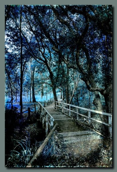 The Bridge by Peco