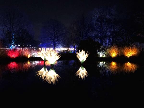 Wisley all aglow by Kaxxie