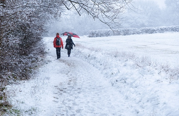 A Winter Walk by martin.w