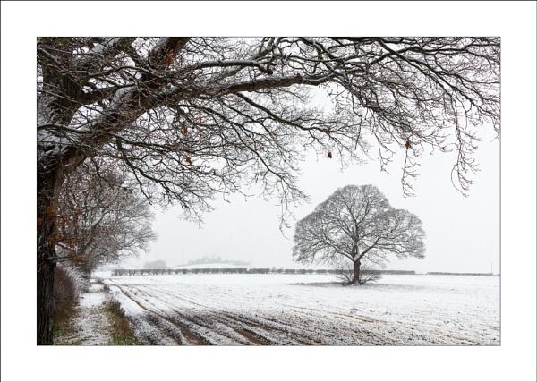 Combs Lane Snow by Steve-T