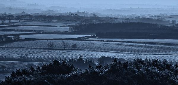 Frosty. by mex