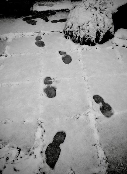 Footprints by nclark
