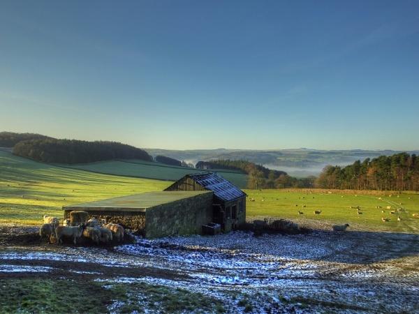 Wintery Moor by ianmoorcroft