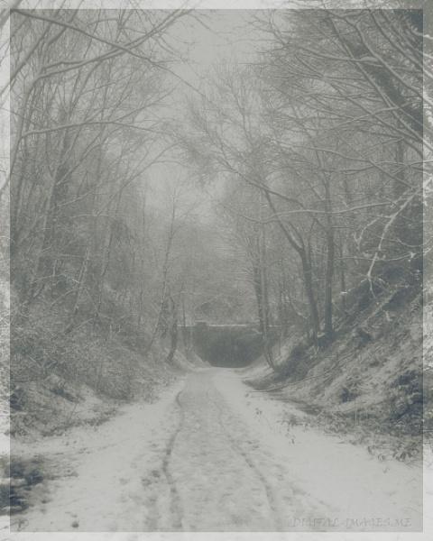 Snow by Alan_Baseley