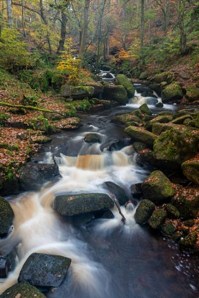 Autumn Flow by jasonrwl