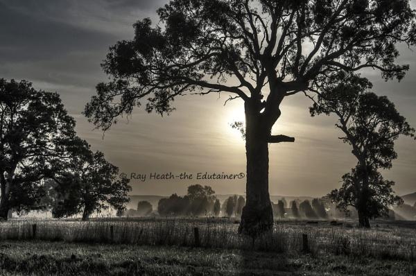 Heat haze sunset at Mansfield-Victoria-Australia; by RayHeath