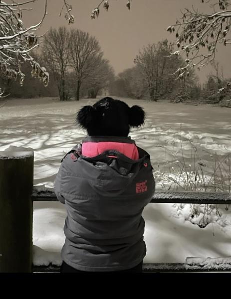 Winter Wonder by Trevhas