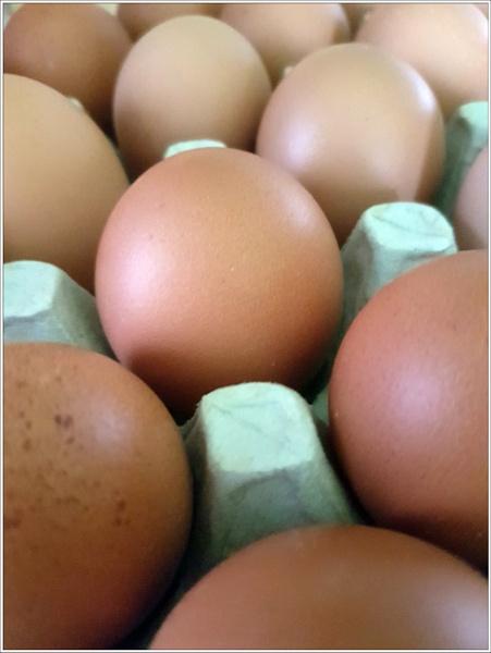 Eggs 2 by graceland