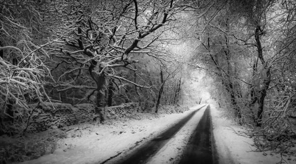 Winter Lane by Legend147