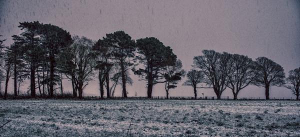Snowy Day by Backabit
