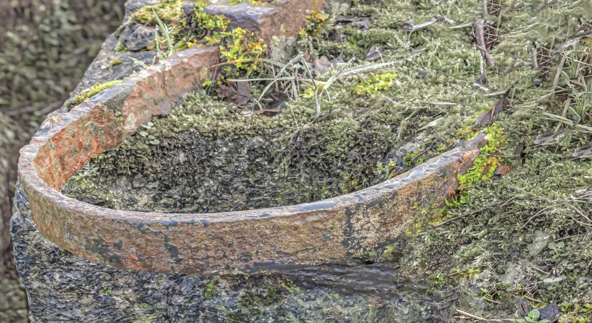 Lock Gate Ring