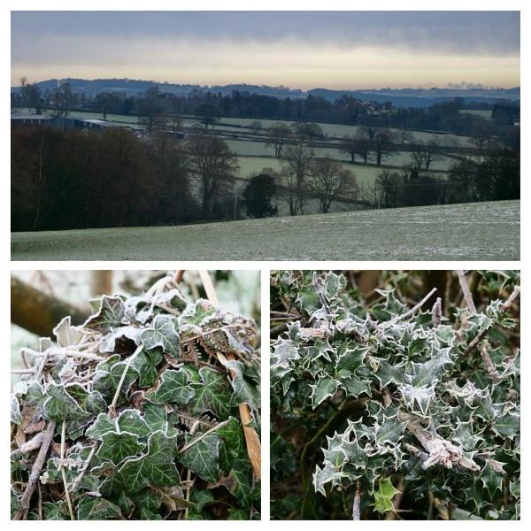 Late January in Derbyshire by wvbarnes