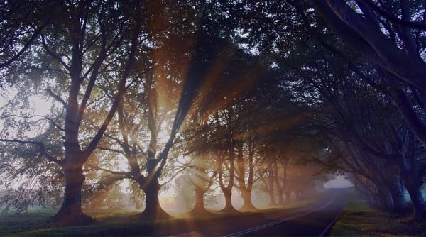 Light my way by oldbloke