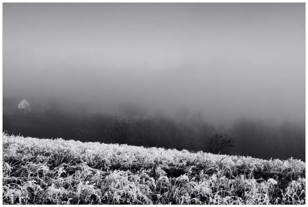 bon hiver V// by bliba
