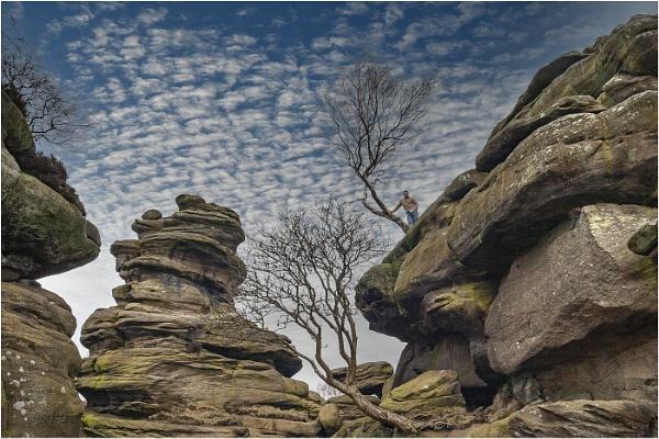 Brimham Rocks by stevenb