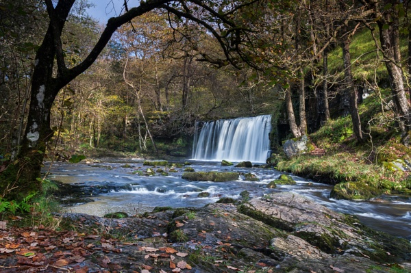 An autumn waterfall by Arvorphoto