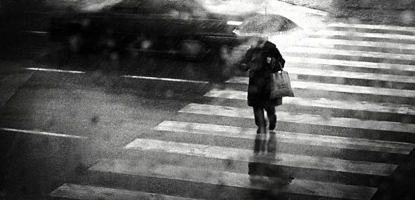 January VI by MileJanjic