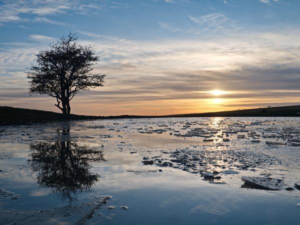 dew pond by alfpics