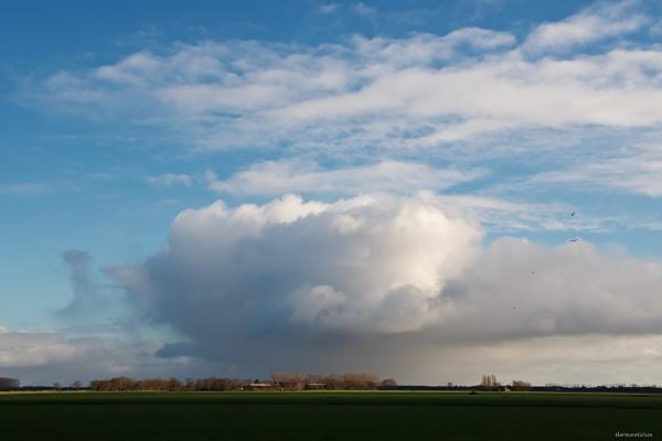 Dutch Landscape by HarmanNielsen