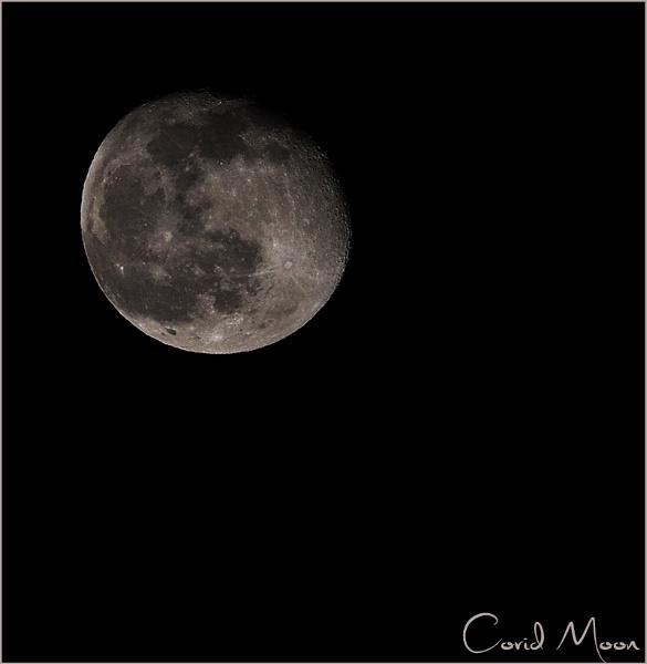 Covid Moon by Big_Beavis