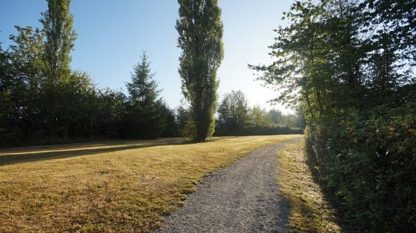 Morning sunbeams by MentorRon