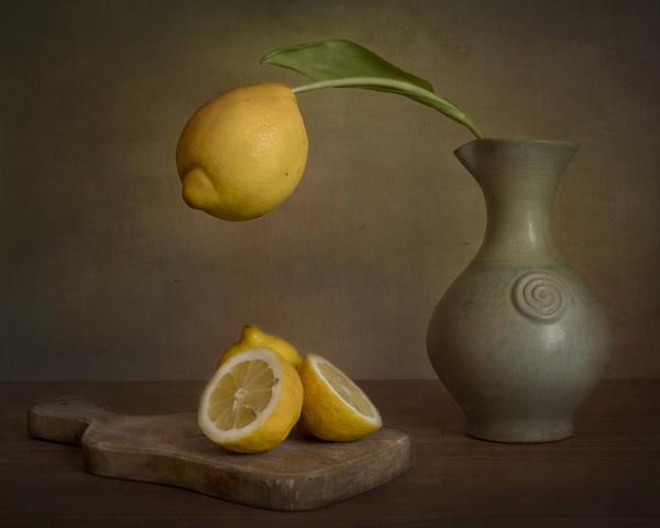 Lemons by swilliams71