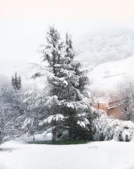 Snow on St Croix