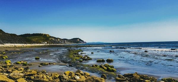 Pebble beach by margymoo